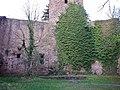 Burgruine Liebeneck, 1263 erste urkundliche Erwähnung, 1692 Zerstörung durch französ. General Chamilly. Wierderaufbau um 1770. - panoramio (1).jpg