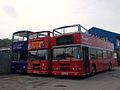 Bus x 3 (15192859992).jpg