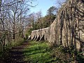 Buttressed wall, Gnoll - geograph.org.uk - 1320504.jpg
