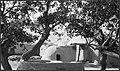 CH-NB - Afghanistan, Deh Hassan (Deh-e Hasan, Dekhkhasan)- Häuser - Annemarie Schwarzenbach - SLA-Schwarzenbach-A-5-21-099.jpg