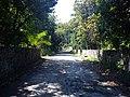 Calle galeana - panoramio (1).jpg