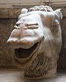 Camel's Head.jpg