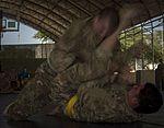 Camp Lemonnier Combatives Tournament 170113-F-QX786-0301.jpg