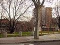 Canillas, Madrid, Spain - panoramio - Ricardo Ricote Rodrí… (5).jpg