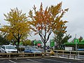 Car park at ASDA supermarket - geograph.org.uk - 1055937.jpg