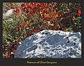 Carso Goriziano (3) - Autunno (Karst of Gorizia - Fall). - panoramio.jpg