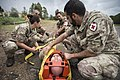 Casualties Evacuation Training, Teulada, Italy, Trident Juncture 15 (22497745671).jpg