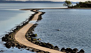 Causeway to Rough Island (11) (geograph 2901251).jpg