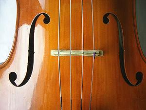 300px-CelloCloseup3.jpg