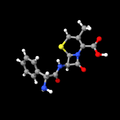 Cephalexin.png