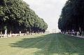 Château de Versailles-Allée Royale-1967 08.jpg