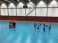 Championnat de France féminin de handball U18 - ENTENTE PAYS DE L'AIN vs LA MOTTE-SERVOLEX (2017-11-12) - 0.JPG