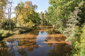 Charlotte River (Michigan) - The Charlotte River in Bruce Township