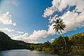 Chavón River banks. Casa de Campo, Altos de Chavón (historical village), La Romana, Dominican Republic (2).jpg