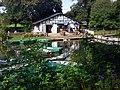 Cheltenham - panoramio (7).jpg