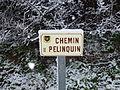 Chemin Pelinquin.jpg