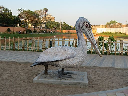 Chetpet-Eco-Park-Chennai-Boating-5