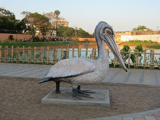Chetpet-Eco-Park-Chennai-Boating-5