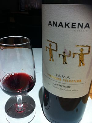 Carménère - A Carmenere from the Cachapoal Valley of Chile.
