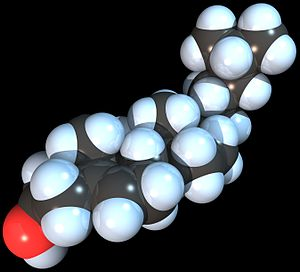 Spacefill model of the Cholesterol molecule