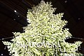 Christkindlmarkt - Swarovski Christmas Tree at Zurich Hauptbahnhof (Ank Kumar) 01.jpg