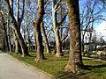 City Park in Skopje 19.JPG