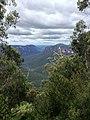 Cliff Top Track - panoramio (8).jpg
