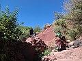 Climbing the mountain in Morocco.jpg