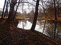 Colomiers - Parc du Cabirol - 20110211 (3).jpg