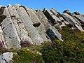Columns of volcanic rock on Garn Fawr - geograph.org.uk - 537937.jpg