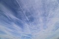 Con trails and clouds from the Woodland Trust wood Theydon Bois Essex England.JPG
