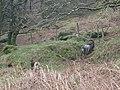 Condado de Wicklow - Glendalough - 20080314115824.jpg