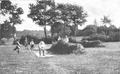 Cop Bunkers Geneva 1901.png