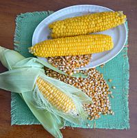 Corn-raw-boiled-and-dry.jpg