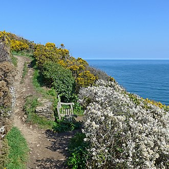 Mawnan - Cornwall Coast Path, Mawnan