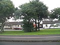 Cottages at Mourne Rise off Castlewellan Road. Newcastle - geograph.org.uk - 1466804.jpg