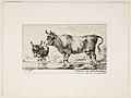 Cow and Ass, after de Loutherbourg MET DP813121.jpg