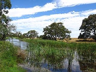 Woady Yaloak River river in Victoria, Australia