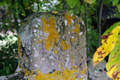 Croix monolithe Pluduno 3.png