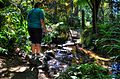 Crossing Stepping Stones in KelburnWellington New Zealand.jpg