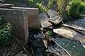 DSC01413 2019v Новый Ладога, водосброс в районе Слободы.jpg