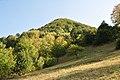 Dacian Fortress of Capalna 061.jpg