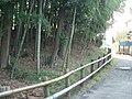 Dairokutenzuka Tumulus (第六天塚古墳) - panoramio.jpg