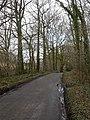 Damerham, lane - geograph.org.uk - 1779879.jpg