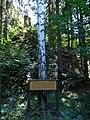 Denkmal Schlacht von Einöd 01.jpg