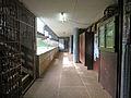 Department of Geography, University of Yaoundé I (3).jpg
