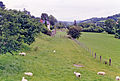 Derwen station site geograph-3409650-by-Ben-Brooksbank.jpg