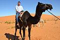 Desert (6486247583).jpg
