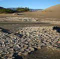Desiccation cracks and Sand Dunes in Death Valley National Park.jpg