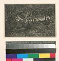 Dessous de forêt (d'après une étude de Théod. Rousseau) (NYPL b14917511-1215223).jpg